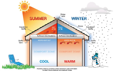 winter%20and%20summer%20graphic